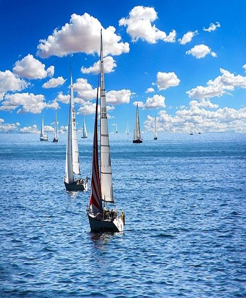 Segelbåtar en vacker sommardag